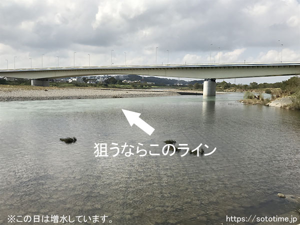 多摩川のスモールマウスバスポイント07